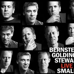 Bernstein, Goldings, Stewart - Live At Smalls